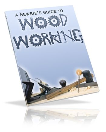 A Newbie's Guide To Woodworking (PLR)