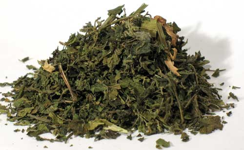 "Nettle ""Stinging""Leaf Cut 2 oz (Urtica dioica)"